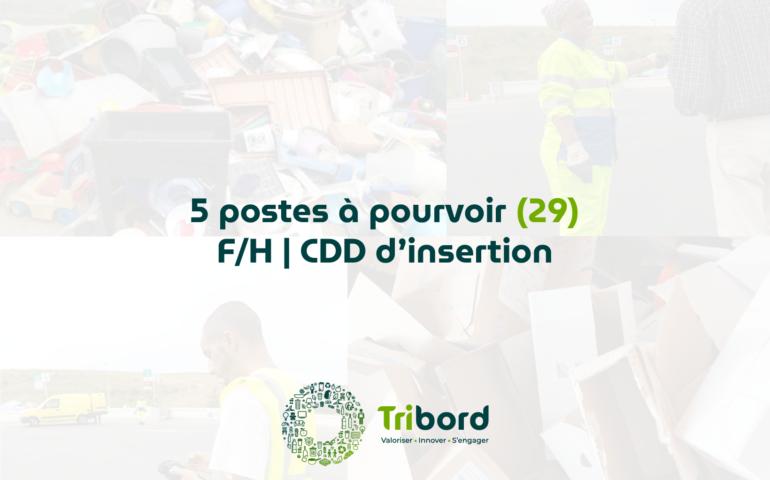 5 postes à pourvoir en insertion dans le Finistère